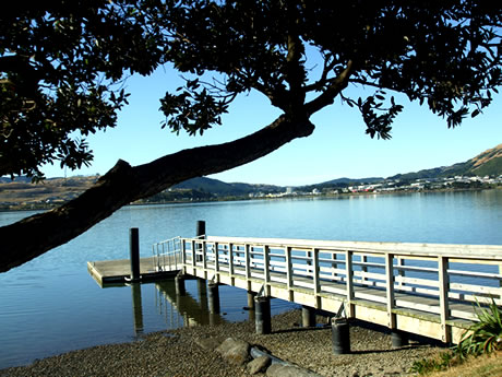View from Porirua Harbour toward Whitireia NZ - Porirua Campus.